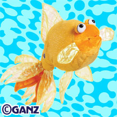 Preview_fantail_goldfish